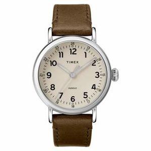 Pánské hodinky Timex TW2T20100