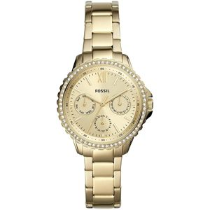 Fossil Izzy ES4890