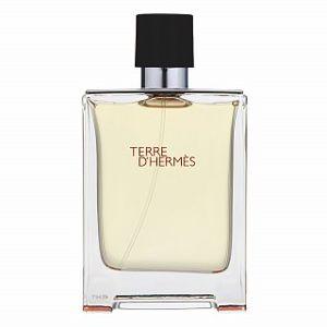 Hermes Terre D'Hermes toaletní voda pro muže 100 ml