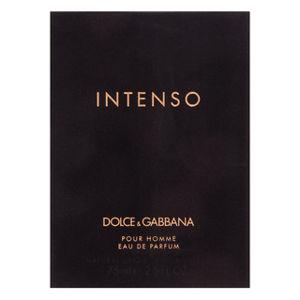 Dolce & Gabbana Pour Homme Intenso parfémovaná voda pro muže 75 ml